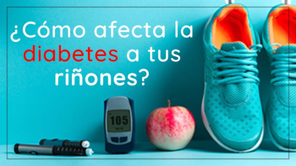 ¿Cómo afecta la diabetes a tus riñones?