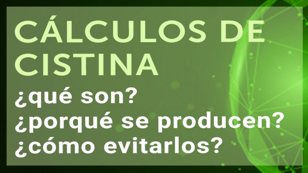 Cálculos de cistina: ¿qué son? ¿porqué se producen? ¿cómo evitarlos?