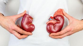 10 señales que anuncian una posible enfermedad renal