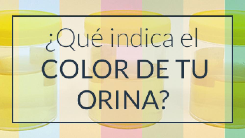 ¿Qué indica el color de tu orina?